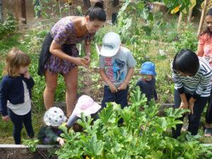 Little Sprouts Garden Program